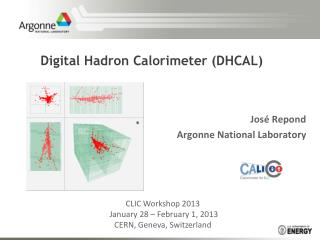 Digital Hadron  Calorimeter  (DHCAL)