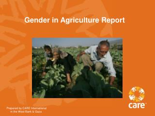 Gender in Agriculture Report