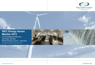 WEC Energy Issues Monitor 2013