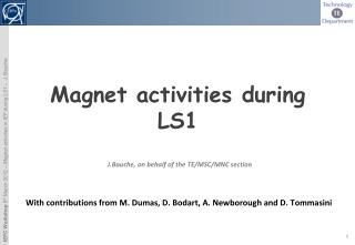 Magnet activities during LS1