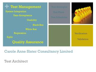 Carole Anne Slater C onsultancy Limited