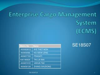 Enterprise Cargo Management System (ECMS)