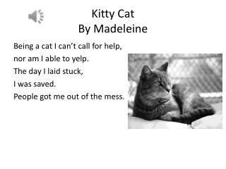 Kitty Cat  By  Madeleine