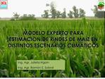 MODELO EXPERTO PARA ESTIMACION DE RINDES DE MA
