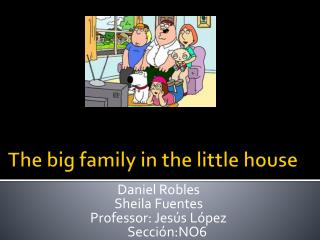 The big family in the little house