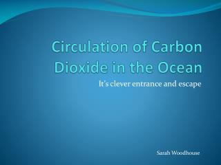 Circulation of Carbon Dioxide in the Ocean