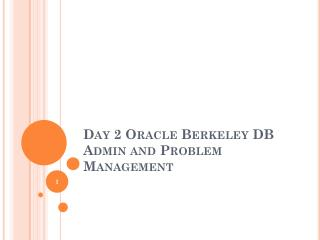 Day 2 Oracle Berkeley DB Admin and Problem Management