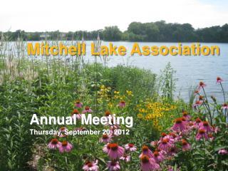 Mitchell Lake Association