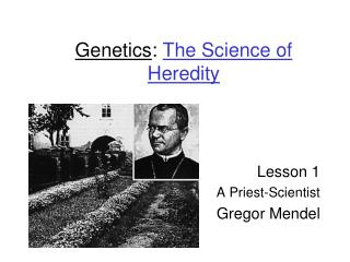 Genetics :  The Science of Heredity