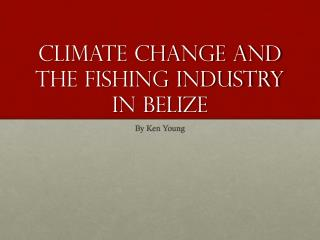 Climate change and the fishing industry in  belize