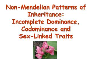 Non-Mendelian Patterns of Inheritance: Incomplete Dominance, Codominance  and  Sex-Linked Traits