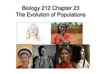 Biology 212 Chapter 23 The Evolution of Populations