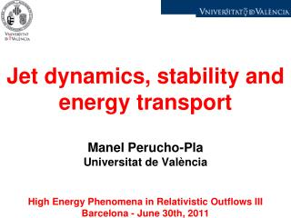Jet  dynamics ,  stability  and  energy  transport