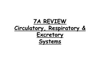 7A REVIEW Circulatory, Respiratory & Excretory  Systems