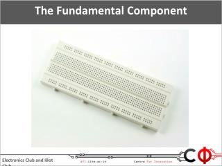 The Fundamental Component