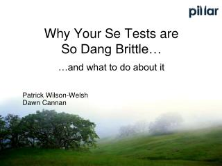 Why Your Se Tests are  So Dang Brittle… …and what to do about it