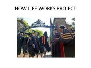 HOW LIFE WORKS PROJECT