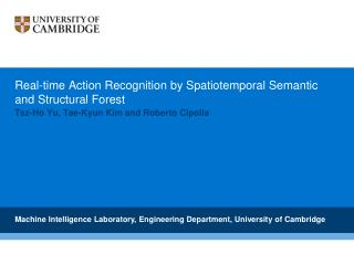 Real-time Action Recognition by Spatiotemporal Semantic and Structural Forest