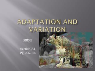 Adaptation and Variation