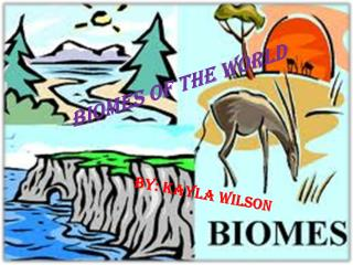 Biomes  O f  T he World