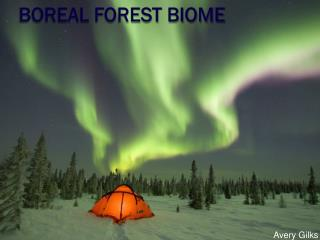 Boreal Forest Biome