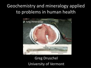 Geochemistry and mineralogy applied to problems in human health