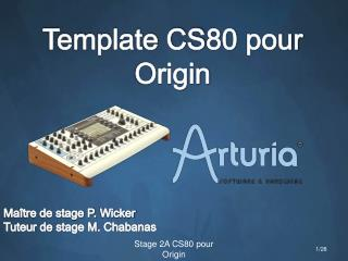 Template CS80 pour  Origin