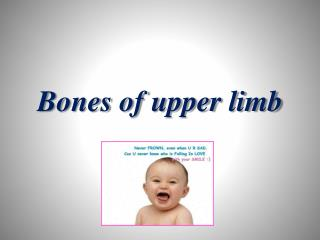 Bones of upper limb