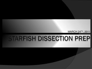 Starfish  Dissection Prep