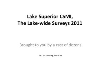 Lake Superior CSMI, The Lake-wide Surveys 2011
