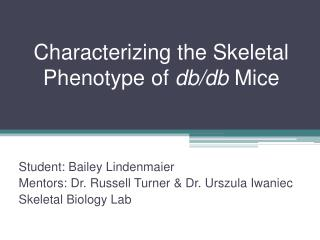 Characterizing the Skeletal Phenotype of  db/db  Mice