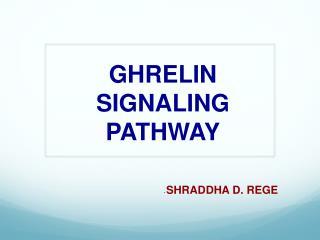GHRELIN SIGNALING PATHWAY