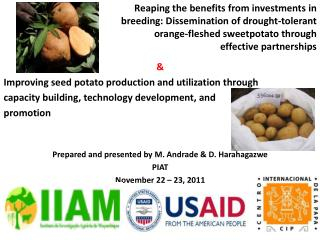 & Improving seed potato production and utilization through