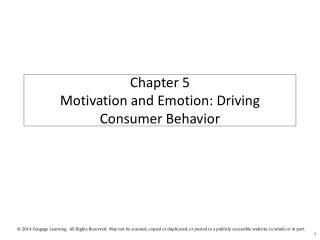 Chapter 5  Motivation and Emotion: Driving Consumer Behavior