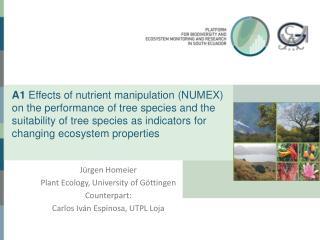 Jürgen Homeier Plant Ecology, University of Göttingen Counterpart: