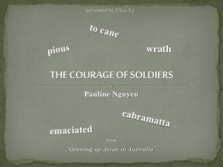 THE COURAGE OF SOLDIERS