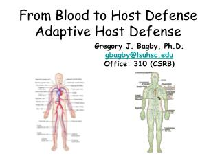 From Blood to Host Defense Adaptive Host Defense