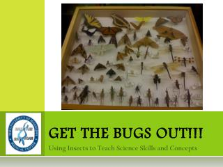 GET THE BUGS OUT!!!