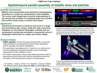 Spatiotemporal parallel assembly of metallic wires and particles