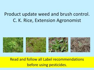 Product update weed and brush control . C . K. Rice,  Extension Agronomist