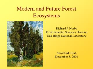 Modern and Future Forest Ecosystems