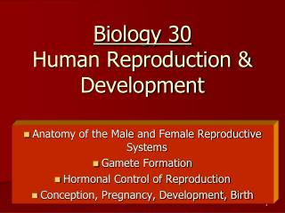 Biology 30 Human Reproduction & Development