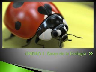 UNIDAD 1. Bases de la Ecología