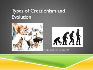 Types of Creationism and Evolution