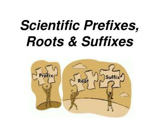 Scientific Prefixes, Roots & Suffixes