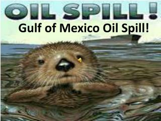 Gulf of Mexico Oil Spill!