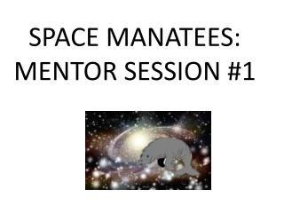 SPACE MANATEES: MENTOR SESSION #1