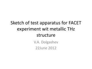 Sketch of test apparatus for FACET experiment wit metallic THz structure