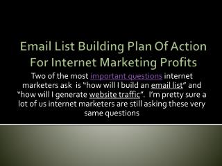 Email List Building Plan Of Action For Internet Marketing Pr