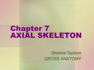 Chapter 7 AXIAL SKELETON